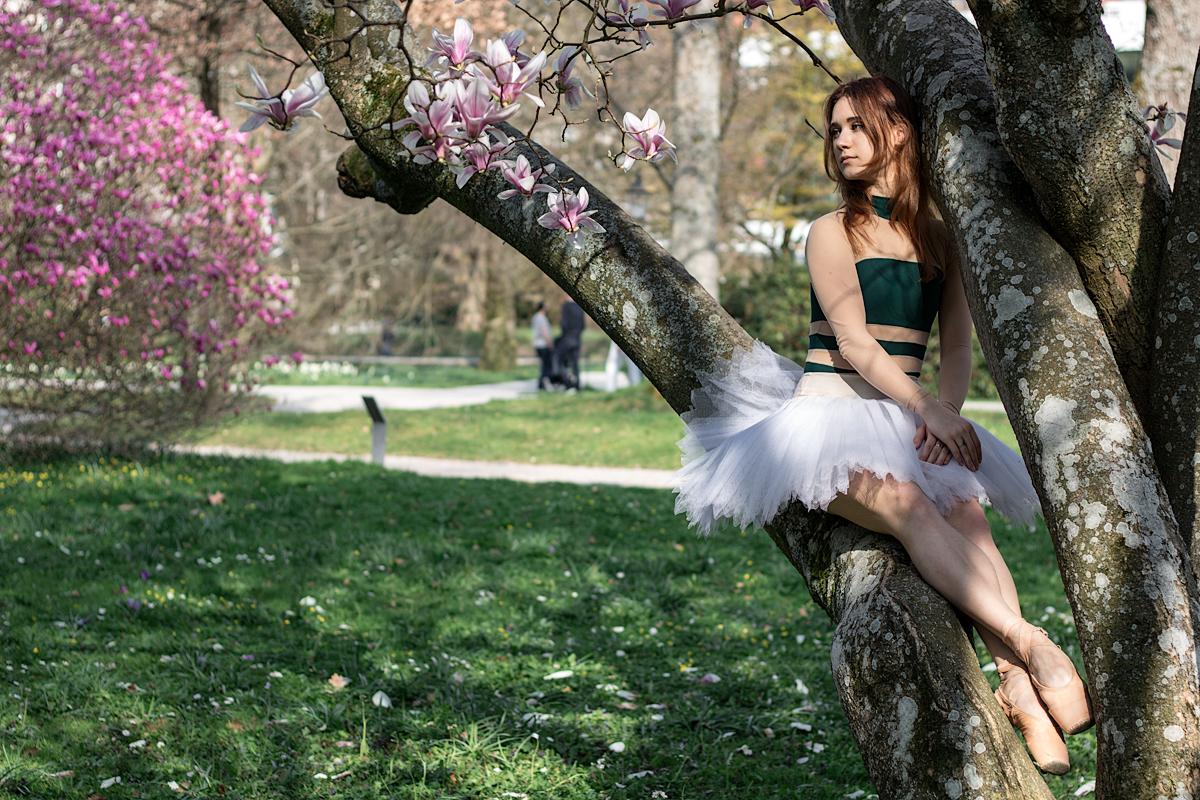 Балерина на дереве