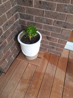 Simple Access to Drain Waste Vent
