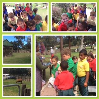 Grade 1 Outing to Holmeleigh Farm