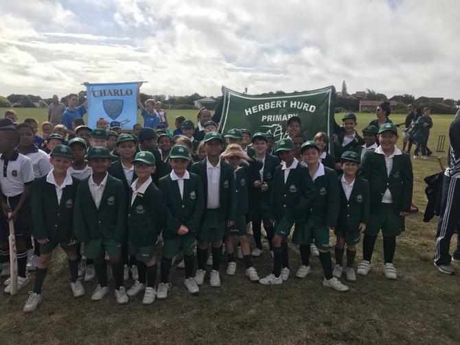 Mount Pleasant Mini Cricket Festival