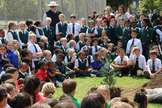 Checkers Sponsors Trees for Arbour Day