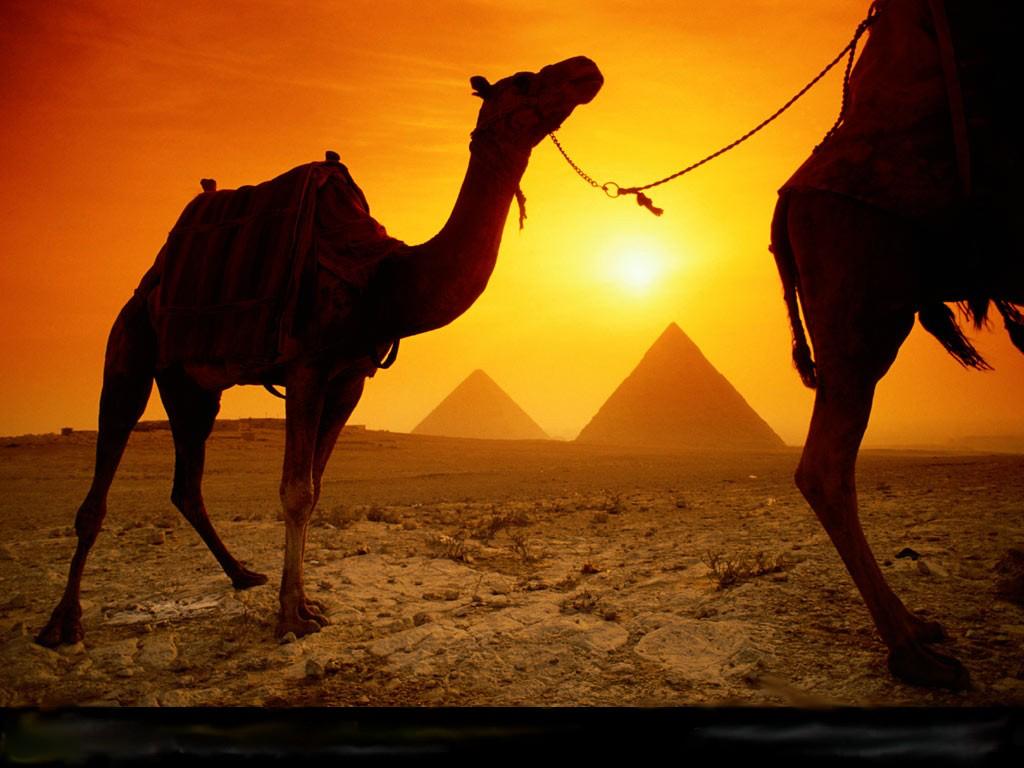 Egypt image 2.jpg