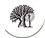 bilgym-logo.png