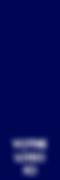 votre logo bleu ici 60x180.png