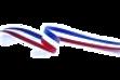 drapeau_edited_edited.png