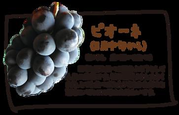 山梨県,ぶどう,畑,ネヅノハタケ,ピオーネ