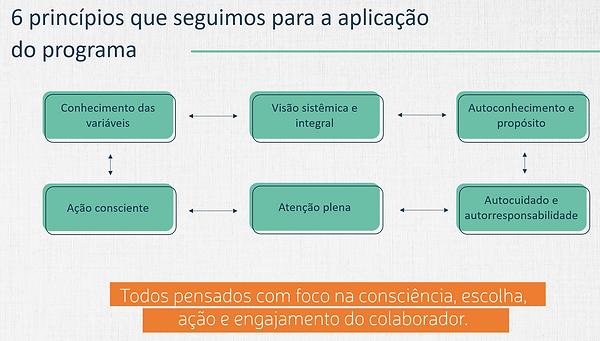 Princípios para aplicação do Programa.pn