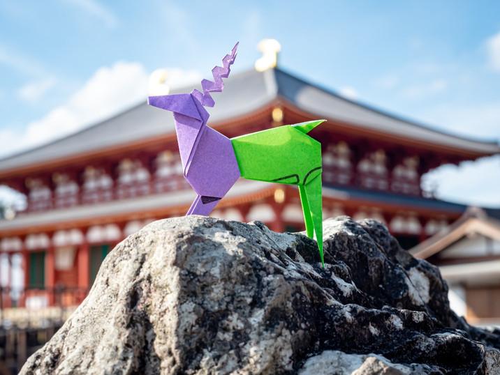 Origami%20finished-3%20Lisa_edited.jpg