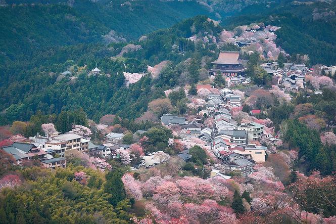 Spring view of Yoshino town, in Japan..j