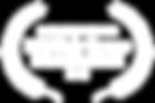 CATEGORY WINNER - NYS Fair Drone Film Fe