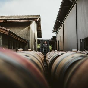 Clos du Val Winery | Napa, CA