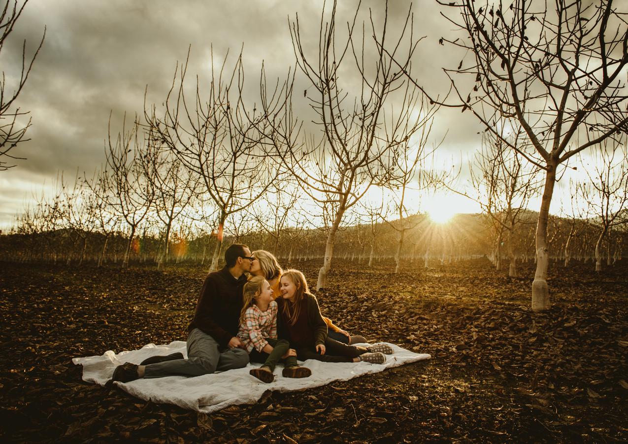 Family Photography in Napa, CA || Hemlock House Photography