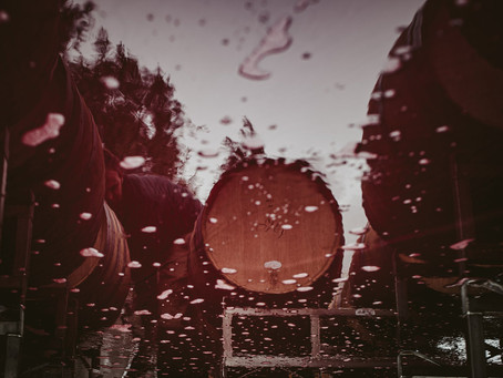 Documentary Photography at Hyde de Villaine Winery in Napa, CA