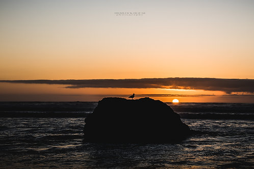 Bodega Bay Sunset I