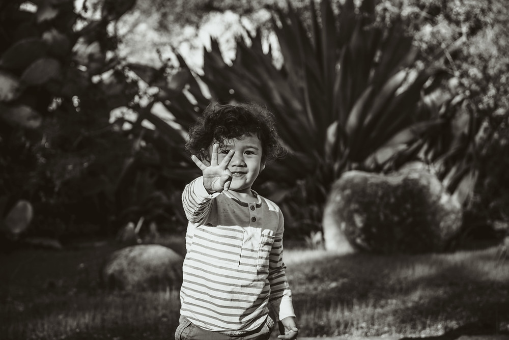 Napa family photographer, boy