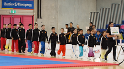 Opening Ceremony NZ Wushu