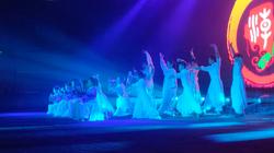 Teochew Wushu Performance March 2019 NZ