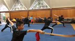 Dao _ Broadsword 刀術 Class NZ Wushu