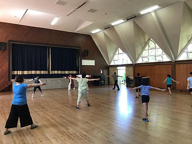 Tai Chi For Health Class Auckland.jpg