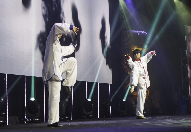 Tai chi performance NZ Wushu