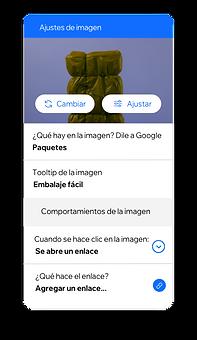 Configuración de la imagen que te permite crear Roles y Permisos para los miembros del equipo y el alt text para las imágenes para que tu contenido sea accesible para todos.