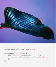 El back-end de un sitio web de una revista que utiliza tecnología Velo, incluyendo bases de datos para crear múltiples páginas y programación personalizada.