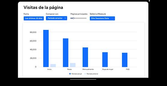 El informe de visitas a la página en Wix