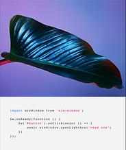 Birden çok sayfa ve özel kod oluşturmak için veritabanları içeren Velo Teknolojisini kullanan bir dergi web sitesinin arka ucu (back-end'i).