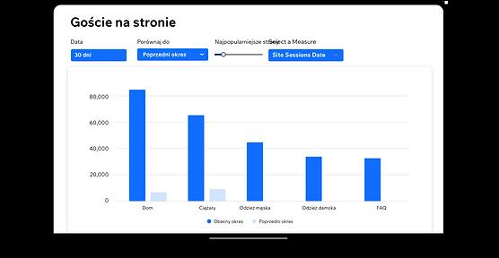Raport Odwiedziny strony w Wix Analytics