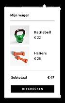 Een Wix website met een ingebouwde winke
