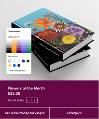 A book publication website editing and showcasing design features such as color palette, v