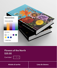 Un sitio web de publicación de libros siendo editado con el Editor Wix.