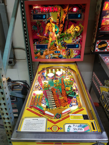 Pinball Pirate Totem_5.jpg