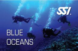 Blue Oceans