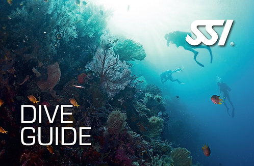 Dive Guide - Non Professional