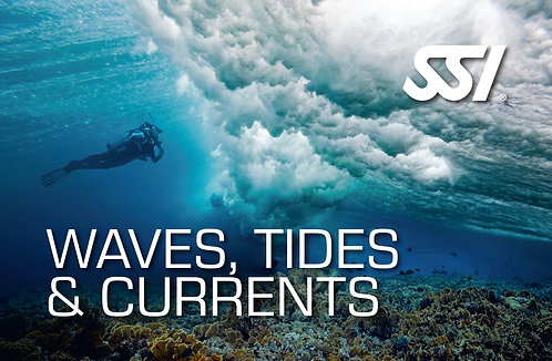 Waves, Tides & Currents
