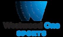 WW1 logo.png