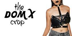DOMX home page slide show.jpg
