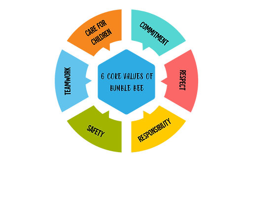VALUES PIE CHART.png