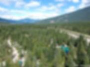 Cedars birds eye 2.jpg