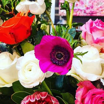 Flowers Up Close