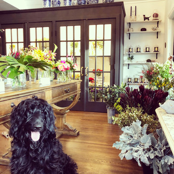 Our Flower Shop
