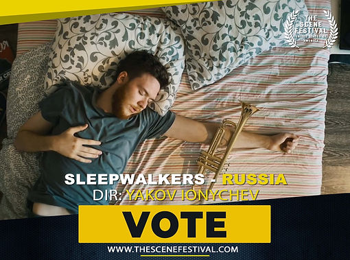 sleepwalkers vote.jpg