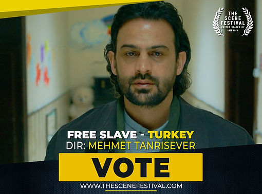 Free Slave VOTE.jpg