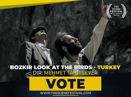 Bozkir Look at the Birds VOTE.jpg