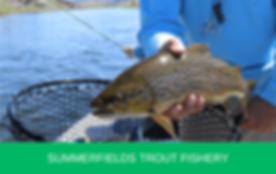 Summerfields-Trout-Fishery-795x500.png