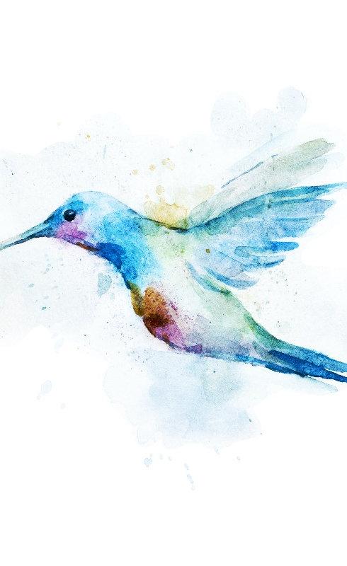 colibri edited