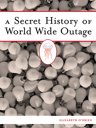 A SECRET HISTORY OF WORLD WIDE OUTAGE by Elizabeth O'Brien