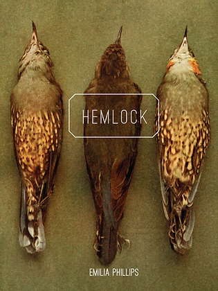 HEMLOCK by Emilia Phillips