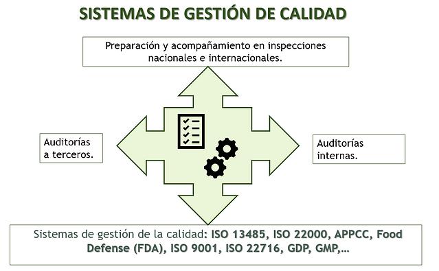 Gestión_de_Calidad.PNG